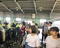 女性農業士と、ふれあい交流会~れんこんセンター見学~