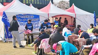 「かすみがうらマラソン兼国際盲人マラソン2019」でトレーナー活動研究会がコンディショニングサポートブースを担当しました